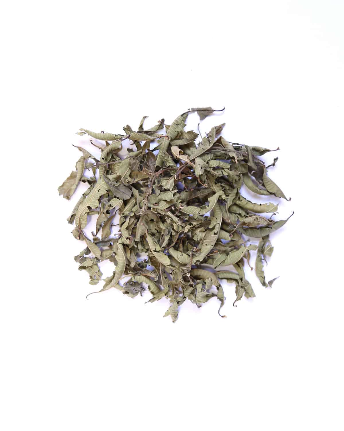 Lemon Verbena Northern Tea Merchants