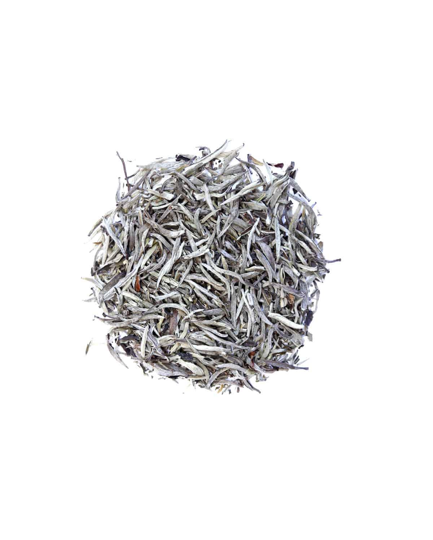 Yin Zhen Silver Needle White Tea Northern Tea Merchants